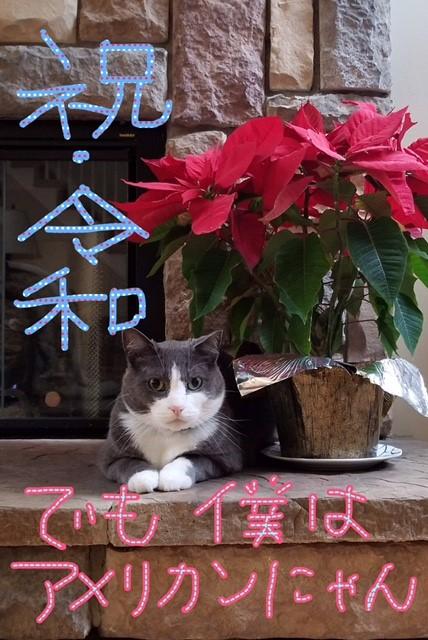 日本の皇室は世界中で、一番長く続く王室。第126代。